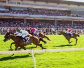 Chris Blackwell's Ascot Racing Selections – Saturday 7th March 2015