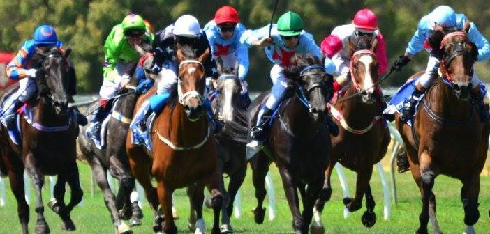 The Leg Up – Albany Race Day Preview – Thursday March 26, 2015