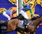 Caulfield Guineas Day Preview