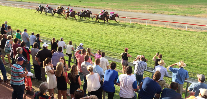 Chris Blackwell's Narrogin Cup Selections – Sunday 19th April 2015