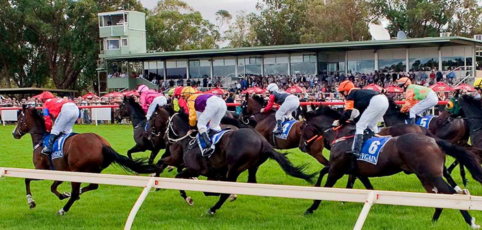 Ernie Manning's Pinjarra Racing Selections – Thursday 2nd July 2015