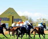 Geraldton Ratings and Times Selections