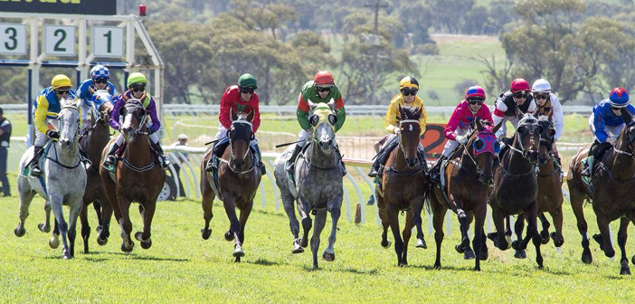 Ernie Manning's Northam Racing Selections