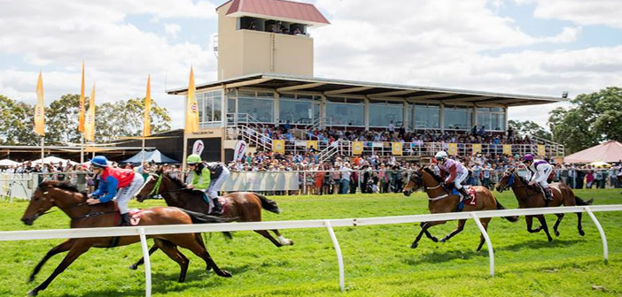 Ernie Manning's Northam Cup Selections