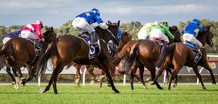 Chris Blackwell's Belmont Selections