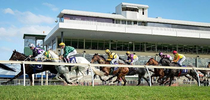 Ernie Manning's Belmont Selections