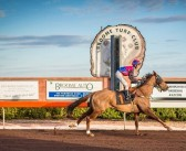 The Leg Up – Broome Racing Preview