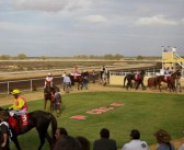 Leeson And Her Veteran Charge Take Out Feature Carnravon Sprint