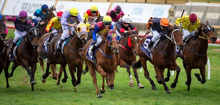 Chris Blackwell's Belmont Park Preview