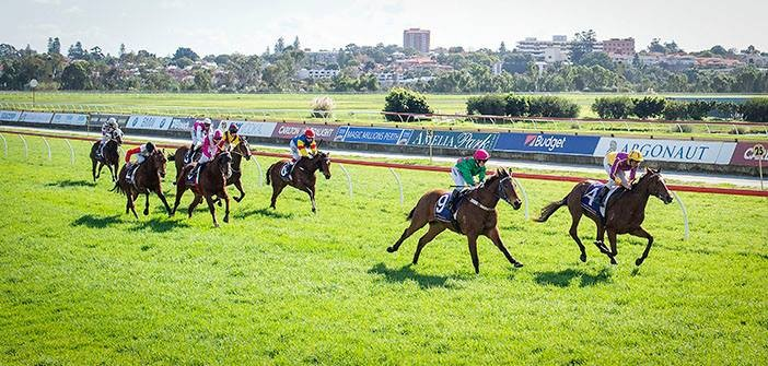 Belmont – The Stats 10 October 2015