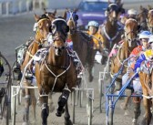 Ernie Manning's Gloucester Park Saturday Selections