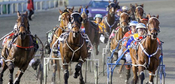 Ernie Manning's Inters @ Bunbury Harness Selections