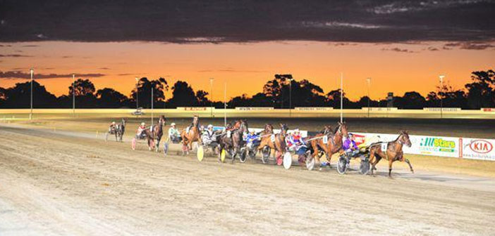 Ernie Manning's Bunbury Harness Selections
