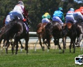 Albany's Leading Rider Up For Grabs