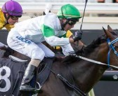 What History Says: WA Sires Produce Stakes