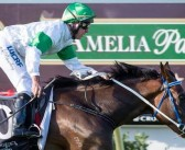 WA Flavour In Bid To Win Group One In Melbourne