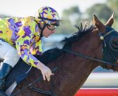Juicing Carrots To Carry Family Honours In Belmont Classic