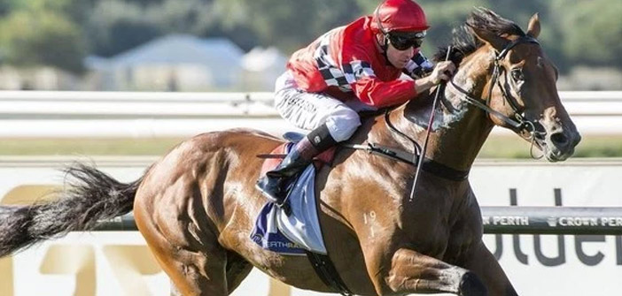 Boom Time Draws 10 For Japan Cup Ozrace