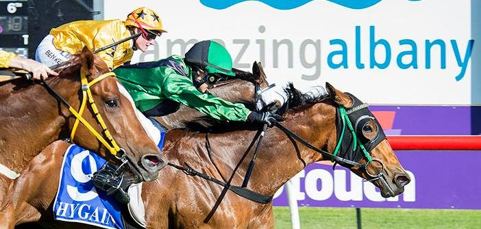 Ernie Manning's Albany Selections