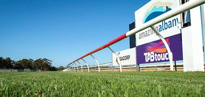 The Leg Up – Albany Racing Preview
