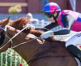 Vega Has Magic Touch For Goodwood Defence