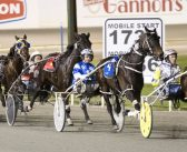 Ernie Manning's Gloucester Park Selections