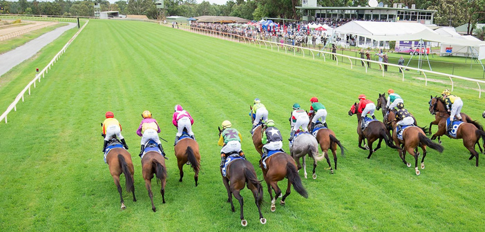 Chris Blackwell's Thursday Value – Pinjarra