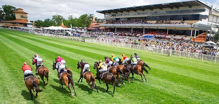 Chris Blackwell's Ascot Preview