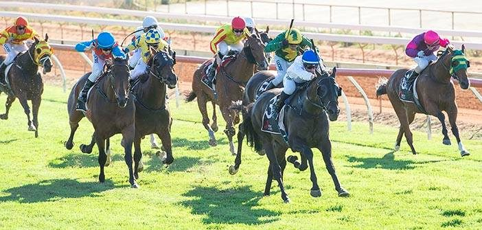 Ernie Manning's Geraldton Selections