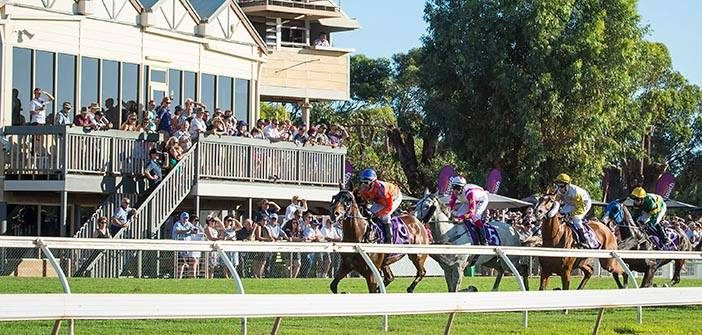 Ernie Manning's Geraldton Cup Selections