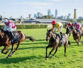 History Of The Belmont Guineas