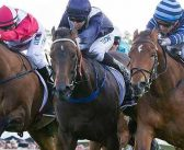 History Of The Champion Fillies Stakes