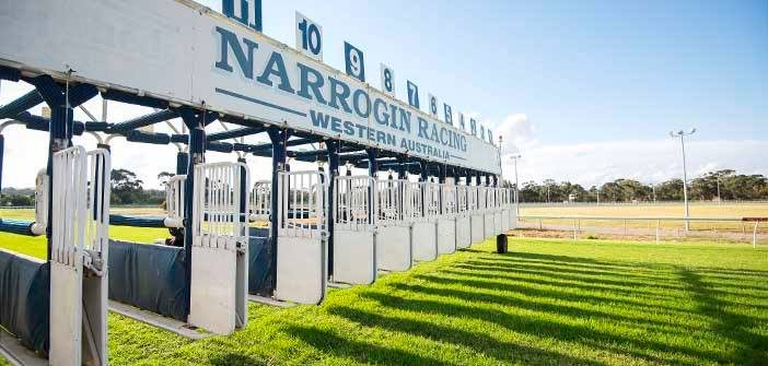 Ben Armstrong's Look @ Narrogin Cup