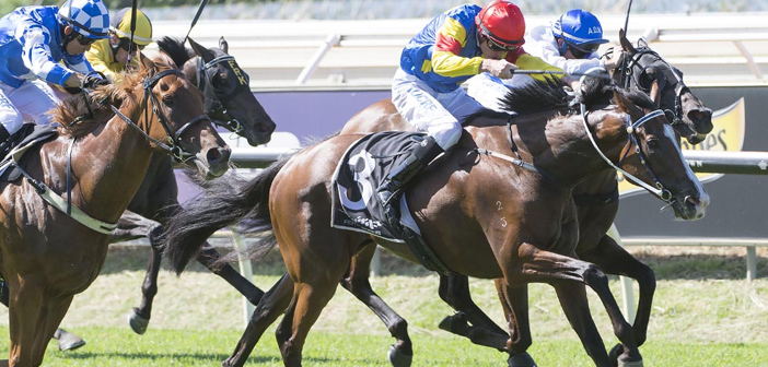 Noske Marks Return With A Double