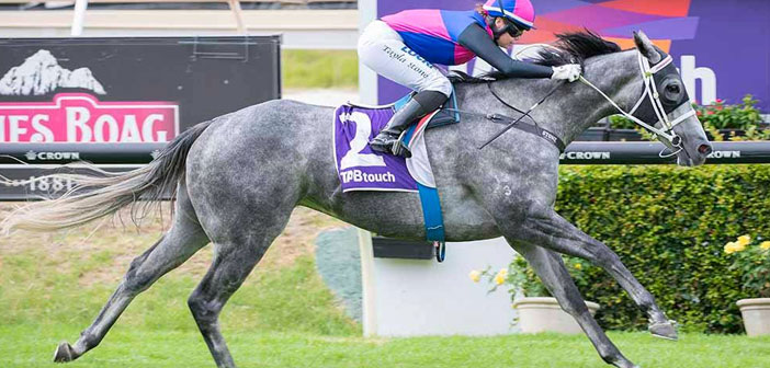 Stone Lands Double Prior To Queensland Trip