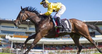Guineas Ride Excites Carbery