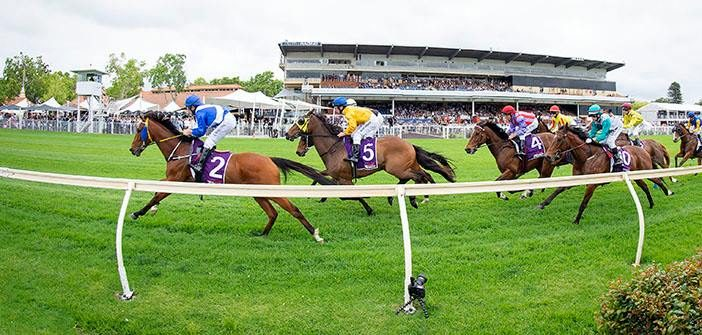 Ernie Manning's Ascot Selections
