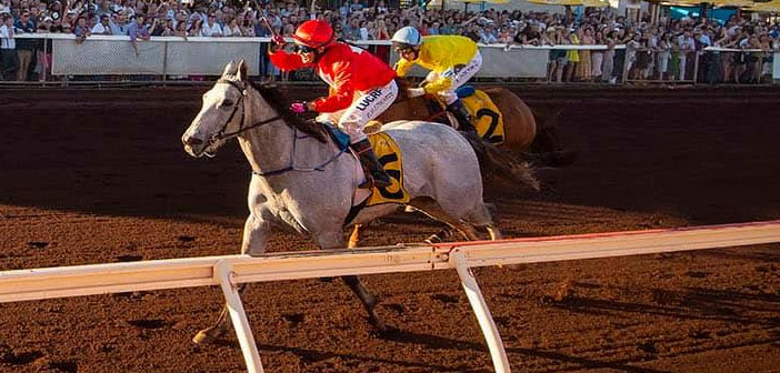 Swift Platinum To Chase More Cup Success