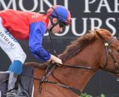 Essential Spice Can Handle Weight Rise Says Pearce