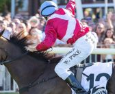 The One One – WA Racing Podcast – Kingston Town Classic Day Edition