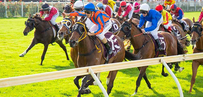The Leg Up: Ascot Preview – Kingston Town Classic Day – Saturday 5 December 2020
