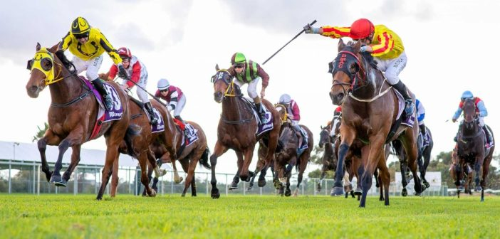 Chris Blackwell's Weekend Value – Northam Cup
